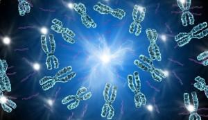 Le gène égoïste dans Poésie Le-Marginal-Magnifique-Le-G%C3%A8ne-%C3%A9go%C3%AFste-reproduction-perp%C3%A9tuation-de-lesp%C3%A8ce-au-d%C3%A9triment-de-lorganisme-%C3%8Atre-humain-%C3%A9go%C3%AFste-indigne-300x173